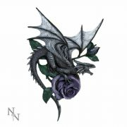 Dragon Beauty Wall Plaque 40cm Anne Stokes Nemesis Now